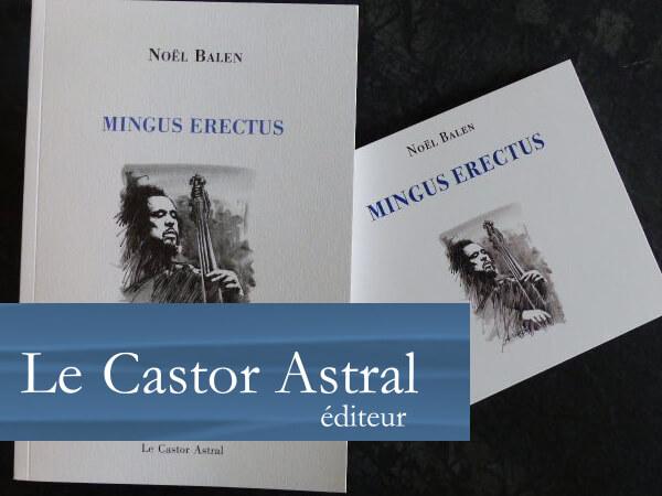 castor_astral_portfolio